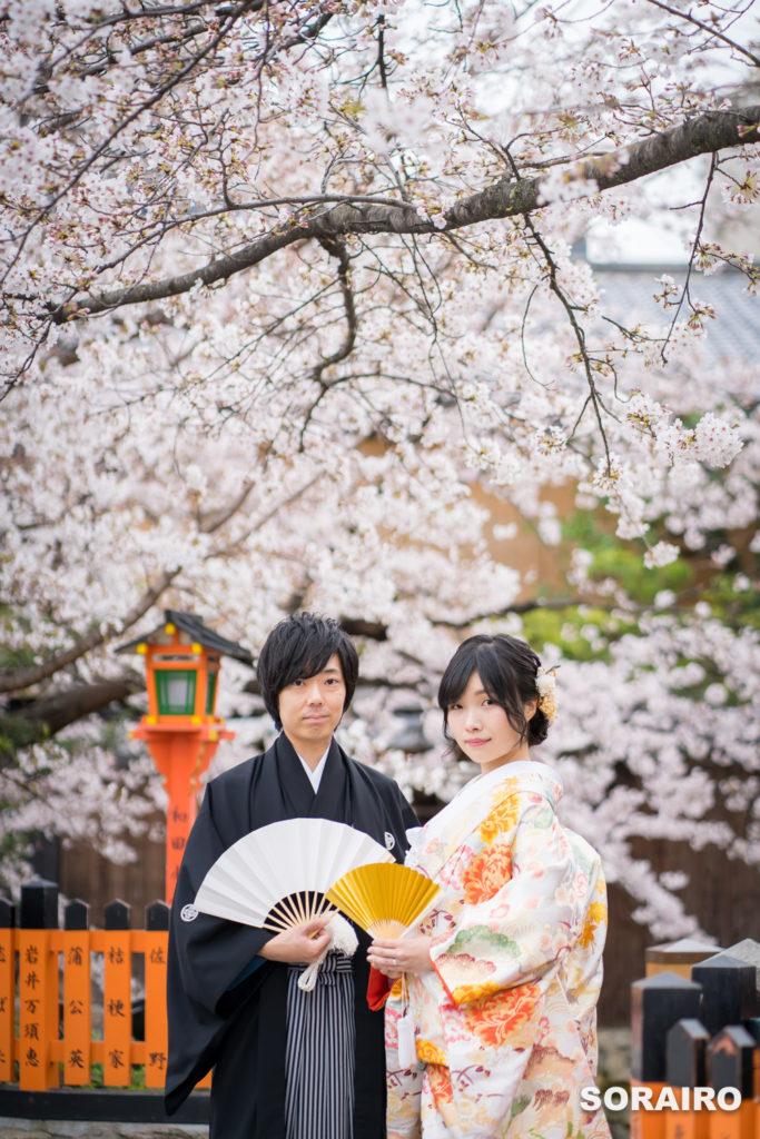 桜をバックにこちらを見つめる着物姿の男女