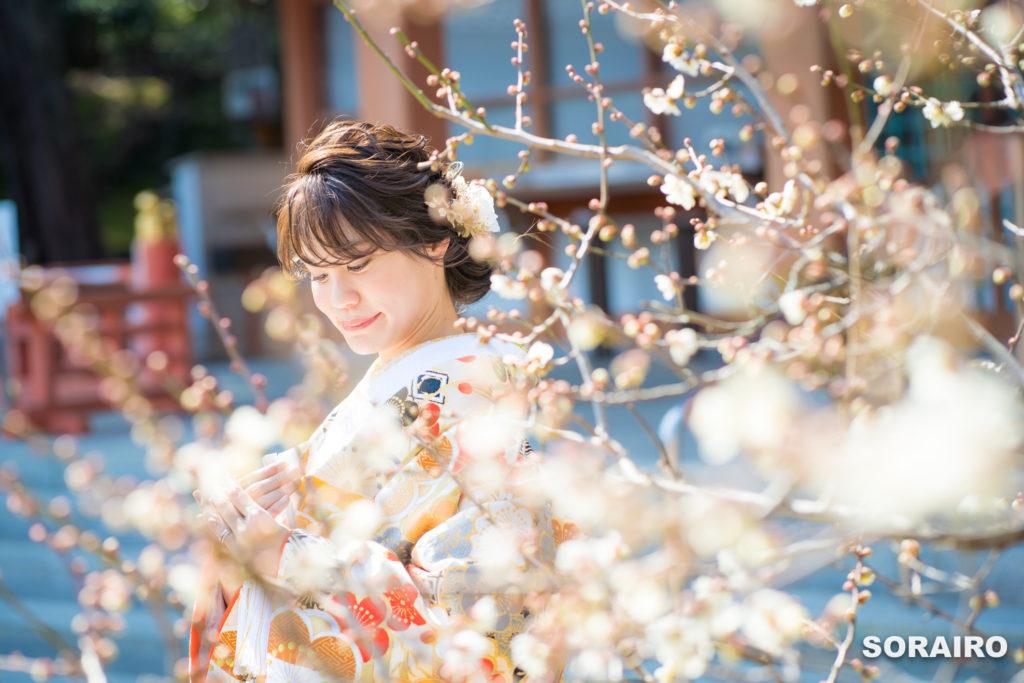 梅の花の間から見える和装姿の新婦